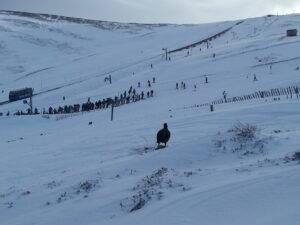 2-aviemore-snow-1